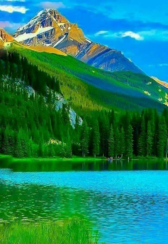 Absolutely Gorgeous Beautiful Nature Beautiful Nature Pictures Nature Pictures