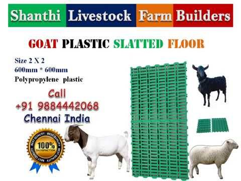 Goat Sheep Farming Plastic Slatted Flooring Goats Livestock Farming Sheep