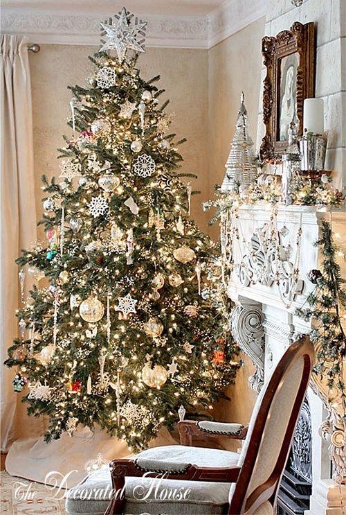 (❄ White Christmas Dreams ❄)