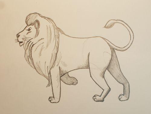 Aprender A Dibujar Un Leon Aprender A Dibujar Dibujos Dibujos De Animales