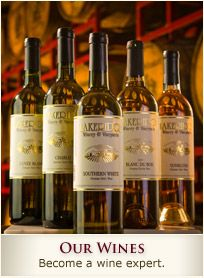 Lakeridge Winery & Vineyards in Clermont, Florida. Surprisingly, Florida wine is quite tasty, although very very sweet!