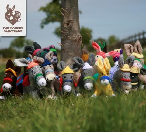 Knitting Patterns Donkeys Free : A herd of knitted woolley donkeys - get the free knitting ...