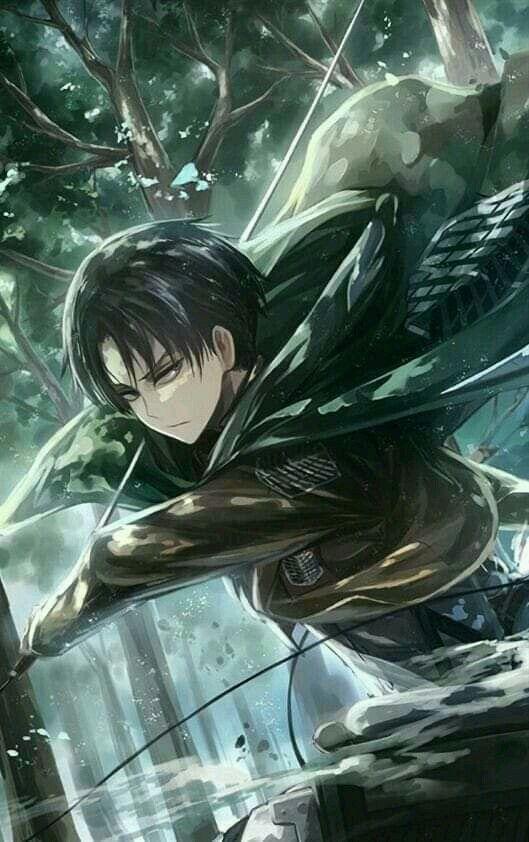 Levai ليفاي Attack On Titan Season Attack On Titan Anime Attack On Titan Fanart