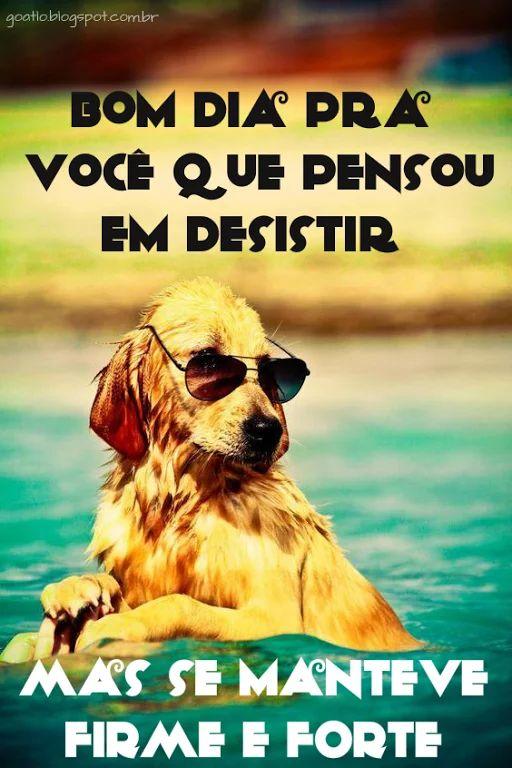 Foto: Bom dia... #goatlo  #EspalhandoAmor