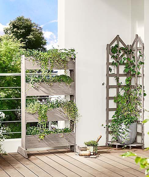 Gartenmobel Pavillons Und Sonnenschirme Jetzt Bei Tchibo Plants Terrace Outdoor