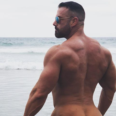 Gay muscle video