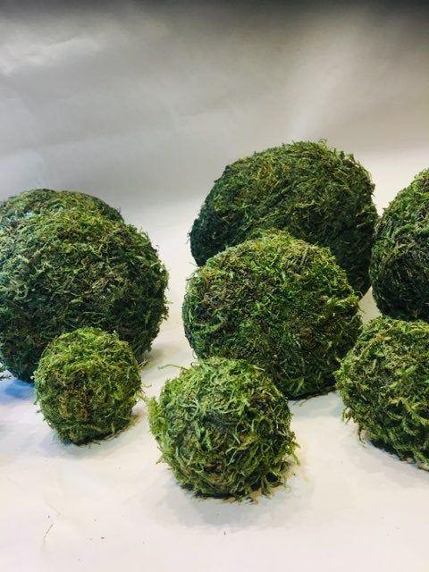 43++ Green moss balls decor ideas in 2021