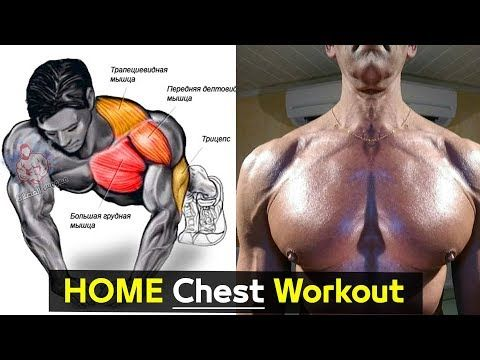 4 Exercise Bodyweight Chest Workout At Home Easy Youtube Workout Training Programs Chest Workout At Home Body Workout Plan