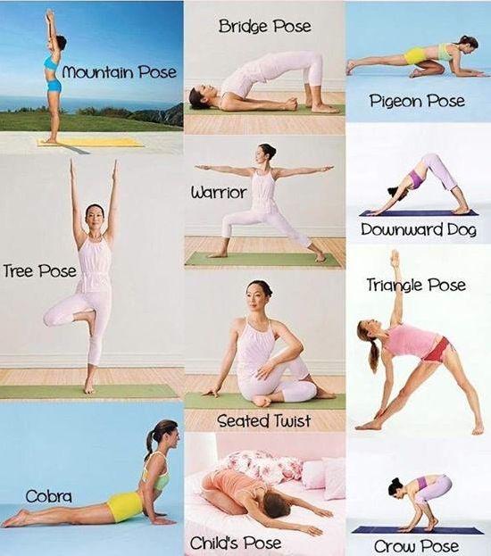 11 Übungen für Anfänger