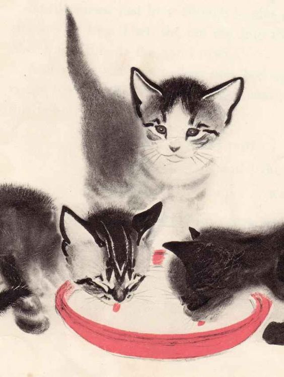 Clare Turlay Newberry's Children's books are full of beautiful illustrations, like these cats.