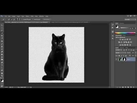 طريقة تفريغ الصور إزالة الخلفية بواسطة الفوتوشوب Youtube Photoshop Adobe Photoshop Animals
