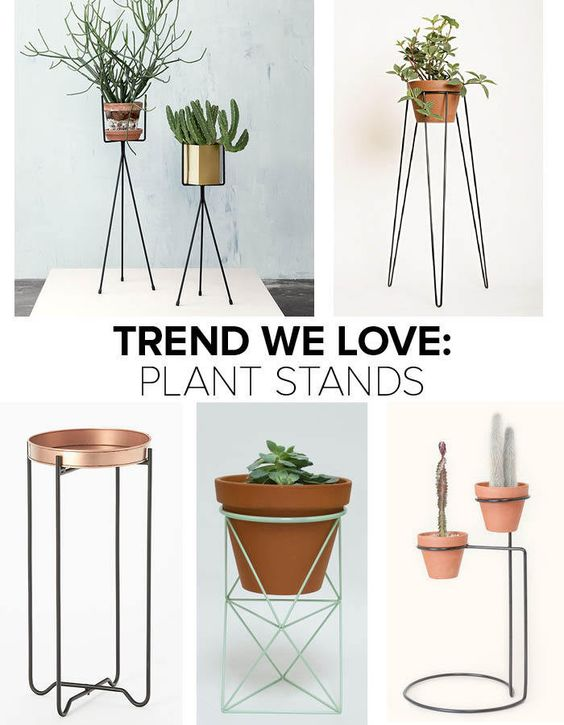 Trend we love plant stands pedestal stand in and general store - Plant pedestal indoor ...