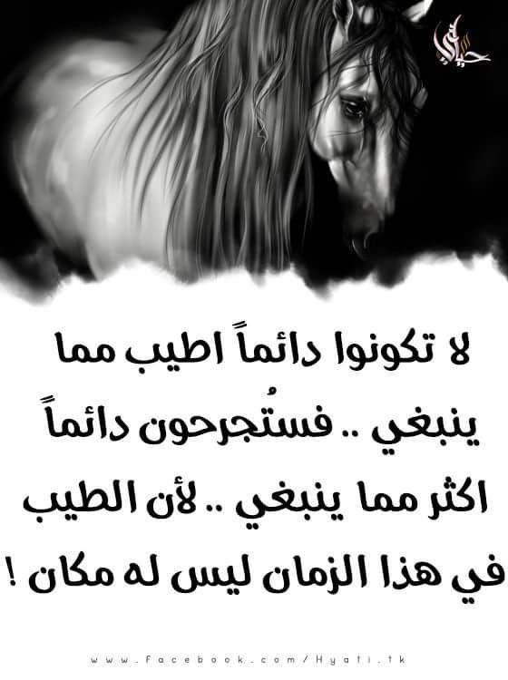 F3lan Arabic Words Words Favorite Quotes