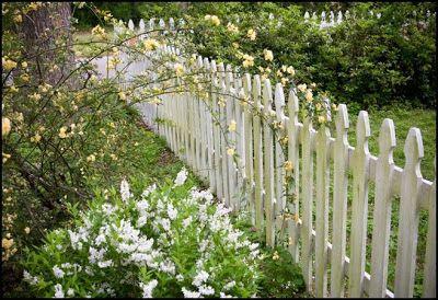 Southern Lagniappe: Picket Fences
