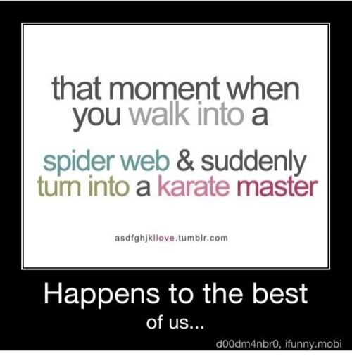 This made me laugh and it reminds me of seeing my husband screaming, yelling, jumping and karate chopping in our shed full of spider webs!! haha