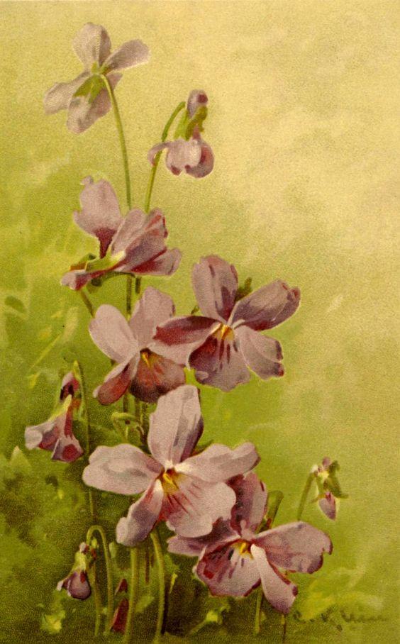 http://v-interiordecor.blogspot.com/2012/03/catherine-klein.html