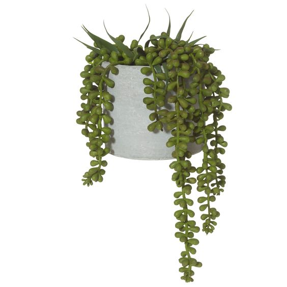 27cm Potted Faux String of Pearls Hanging Plant | Temple & Webster