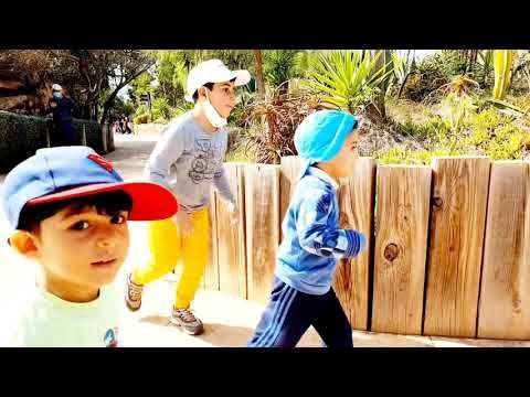 حديقة الحيوانات للاطفال هو مكان متميز لاستراحة الزوجات إذ يتكلف الأزواج بإخراج الأطفال ودفع ثمن Hats Baseball Hats Bucket Hat