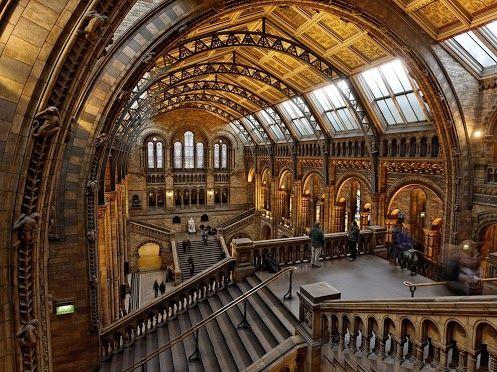 Natural History Museum, London.  ©Raymond Choo  Via National Geographic:http://goo.gl/fO0HO