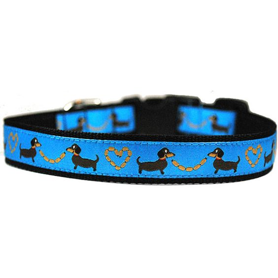 Wiener Dogs and Hot Dogs!: Chili Dogs, Dachshund Kisses, Dachshund Crazy, Dachshund Doggage, Dachshund Finds, Dachshund Products, Dachshund Favorites, Dachshund Clube, Dachshund Keepers