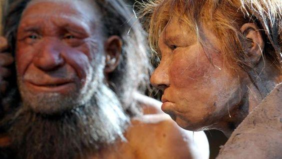 Neue Studie: Ein bisschen moderner Mensch steckt auch im Neandertaler - N24.de: