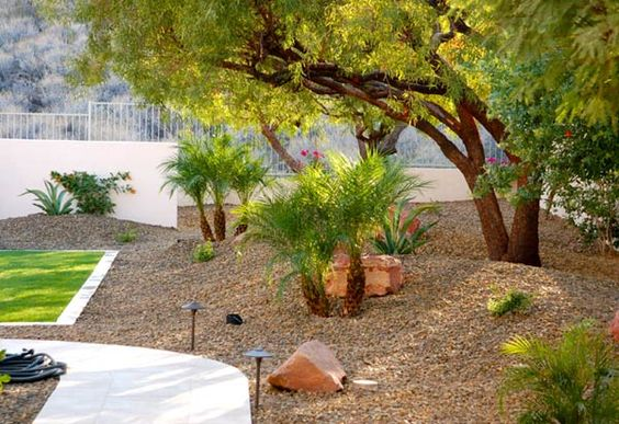 Phoenix and scottsdale landscaping design gallery garden for Landscape design phoenix