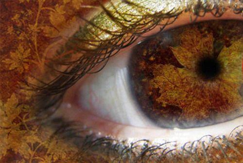 Autumn eye by ~Lina-Garzon