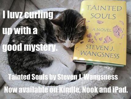 Kitty loves a good read.