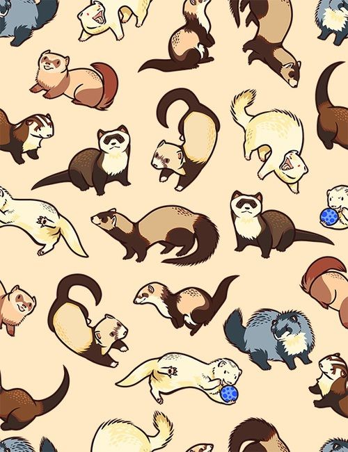 Image About Ferret In Hermoso By Antonella Estefano Cute Animal Drawings Cute Drawings Animal Drawings