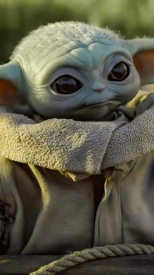Pin By Alehumanmuppet On Star Wars In 2021 Yoda Wallpaper Baby Yoda Wallpaper Baby Yoda Ultra hd yoda wallpaper iphone