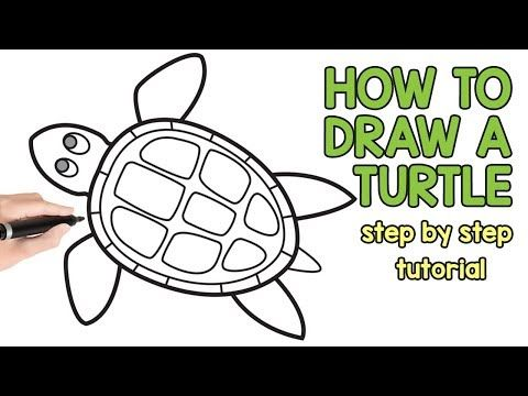 How To Draw A Turtle Step By Step Drawing Tutorial Youtube Turtle Drawing Drawing Tutorial Turtle Sketch