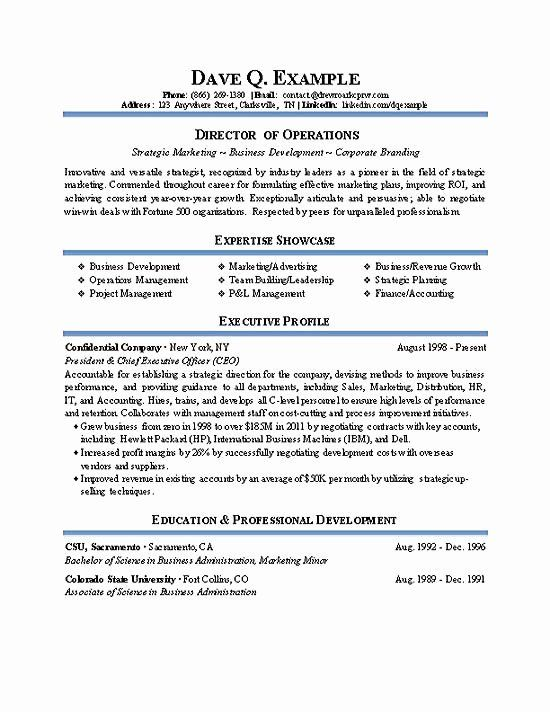 It Director Resume Examples Fresh Operations Director Resume