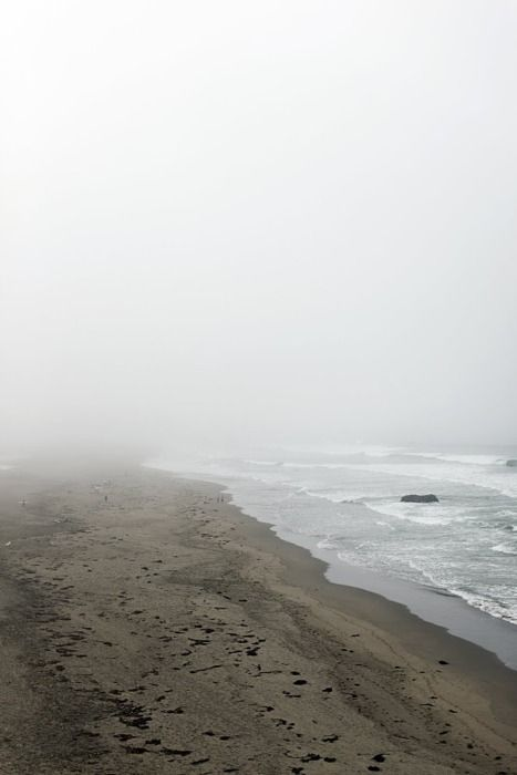 A misty beach and lots of fog