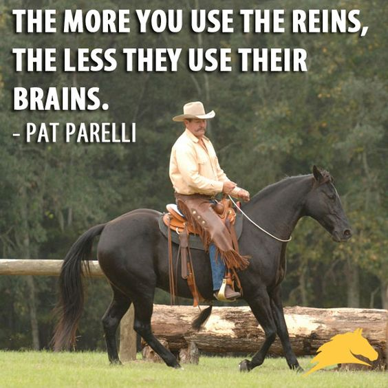 """The more you use the reins, the less they use their brains."" - Pat Parelli ...That's why you always ask with your legs and seat and body position before you touch your hand!!"