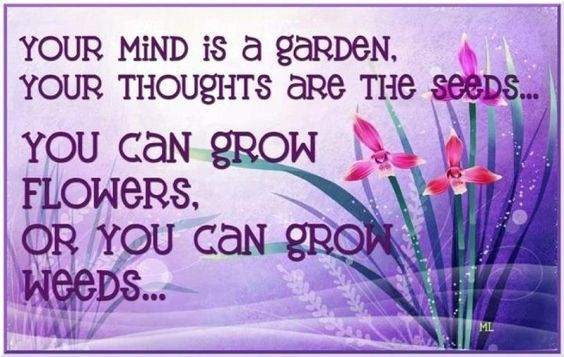 You can grow flowers or you can grow weeds.
