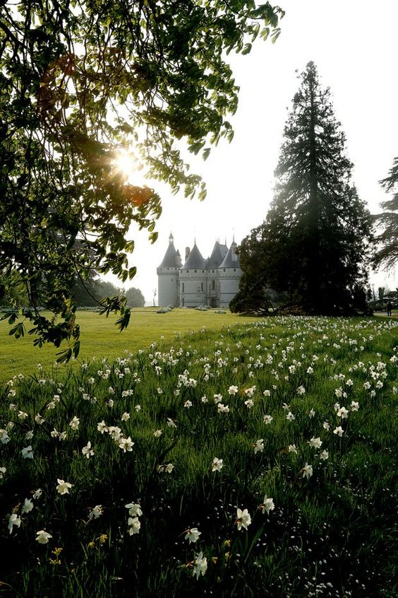 Festival Internacional de Jardins de Chaumont-sur-Loire (Foto: divulgação). Castelo da propriedade, do séc. 15, nomeado pela Unesco como Patrimônio Mundial da Humanidade