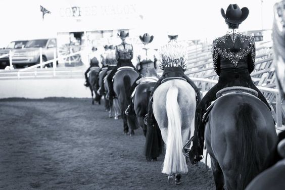 Western Pleasure, Arizona Sun Circut, Equine Chronicle
