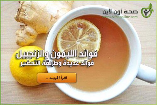 فوائد الزنجبيل والليمون الفوائد الحقيقية والكاملة للزنجبيل والليمون Food Lemon Fruit