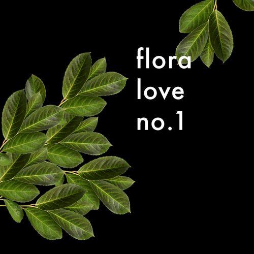 puglypixel_floraloveno1.jpg