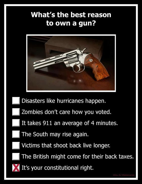 Whats the best reason to own a Gun?