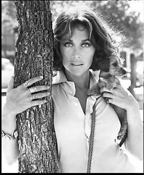 Michele Carey | Michele Carey Picture #15330648 - 288 x 350 ...