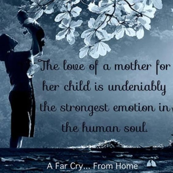 "Quotes For A Mother Who Lost Her Baby: ""The Love Of A Mother For Her Child Is Undeniably The"