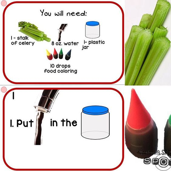how to get out food coloring