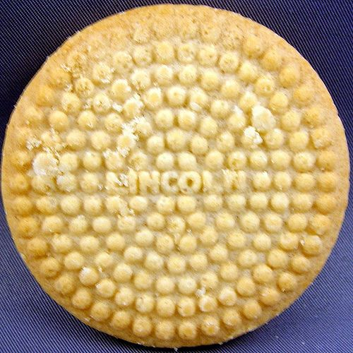 Lincoln biscuits were fab. You nibbled around the edges line by line. You had to do it without breaking the biscuit. -YES! I had forgotten these!
