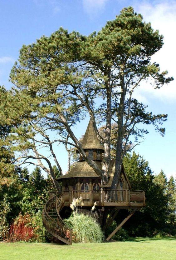 Tree house hotel treehouse pinterest a house for Treeless treehouse