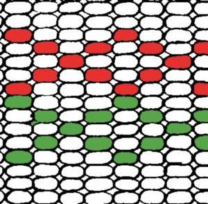 Bead Graph Paper - Craft Supplies - Beading Looms Native American Products and Craft Supplies