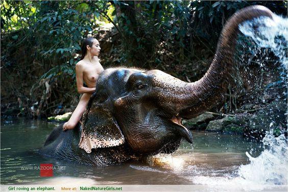 Sexy nude Woman riding bareback barefoot on an Elephant in the Jungle /Sexy nackte Frau reitet ohne Sattel barfuß auf einem Elefant im Dschungel .