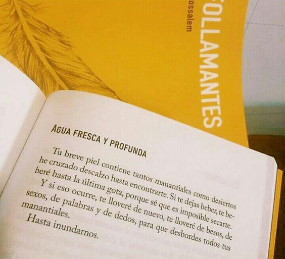 """Agua fresca y profunda (Del libro """"Follamantes"""" de Carlos Salem Sola)."""