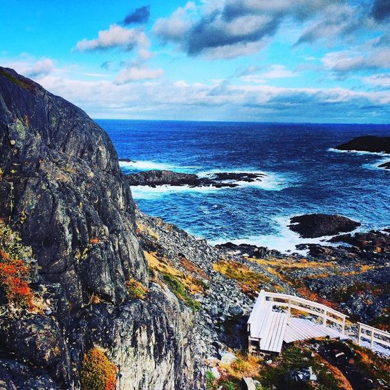 Taking in the view from above.  It's always worth the climb to the top!  #Newfoundland #exploreNL #explorecanada #eastcoast by taralkinden