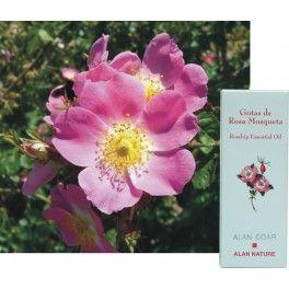 "Gotas de Rosa mosqueta    Gotas de Rosa mosquetaenriquecida con Vitamina ""E"" , Geranio de Egipto y Lavanda."